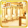 High-End Salon Gold