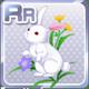 Fall Flowers & Rabbits