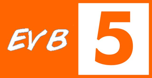 File:EVB5 Ident 2010.png