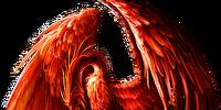 Mystic Phoenix