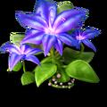 Res azure flower 3