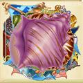 Coll shell purple shell