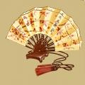 Coll eastern hand fan