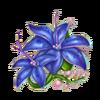 Azure flower