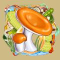 Coll mushroom russula