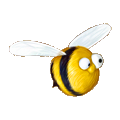 Coll honey bee