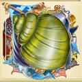 Coll shell green shell