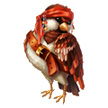 Coll pirate sparrow
