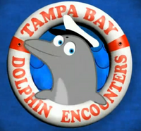 Tampa Bay Sex-Free Dolphin Encounters 2009