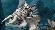 White bewilderbeast gallery 33