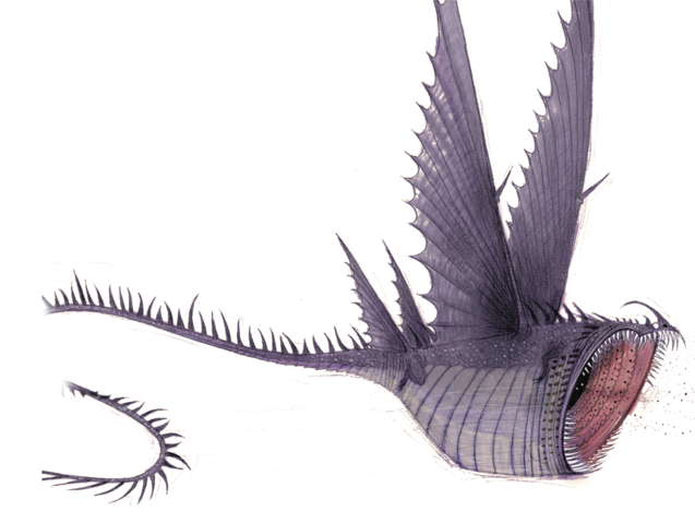 File:HTTYD 10 - Thunderdrum.png