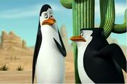 Kowalski and skipper