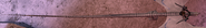 Dsong markings 3
