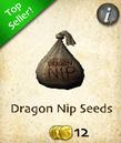 Dragon Nip Seeds