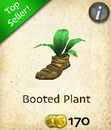 Booted Plant