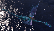 Shivertooth fly1