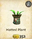 Hatted Plant