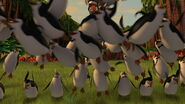 Madagascar-disneyscreencaps.com-27