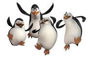 600--pinguins