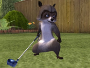 Over the Hedge Video Game RJ