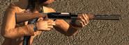 Shotgun-DPL-InGameModel