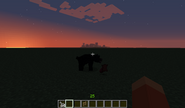 Black bear killed cow