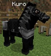 Horse Wearing Armour