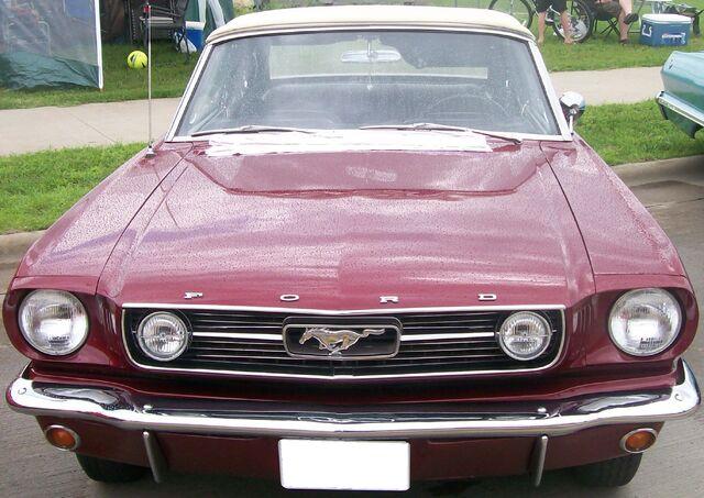 File:Test - Mustang.jpg