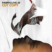 220px-Fabric Live 29