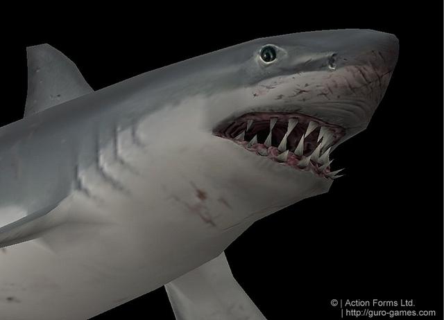 File:Shark2.png
