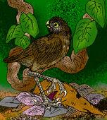 Ornimegalonyx oteroi