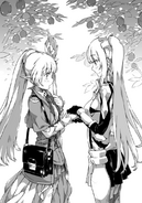 Sword Oratoria Volume 5 Aiz and Lefiya