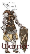 DaD Warrior Class