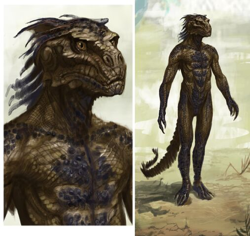 File:Argonian Male.jpg