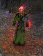 Celeb'hel Rogue Mage