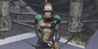 Guard Captain of Fallraen