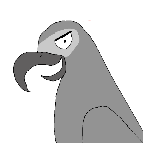 File:African grey.png