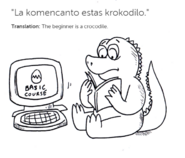 Toon crocnovice