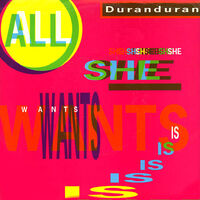 All she wants is duran duran wikipedia song single