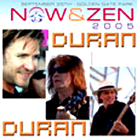 Now & zen 2005 duran duran album