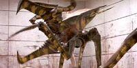 Arachnid Soilders