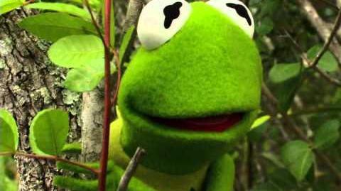 Kermit's Swamp Years Early Trailer