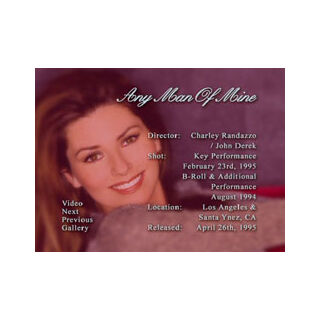 Shania Twain: The Platinum Collection - Any Man Of Mine