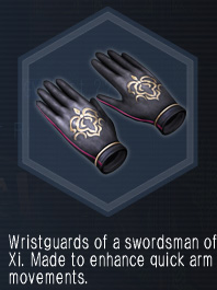 XiSwordsmanGloves