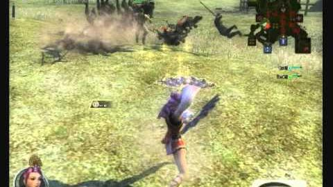 Twin Fans -- Dynasty Warriors Online
