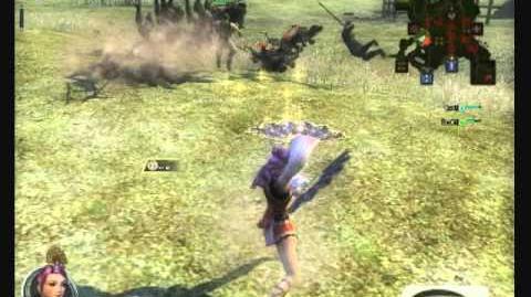 Twin Fans -- Dynasty Warriors Online