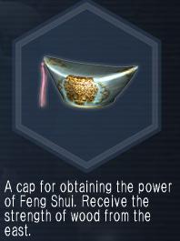 FengShuiCap