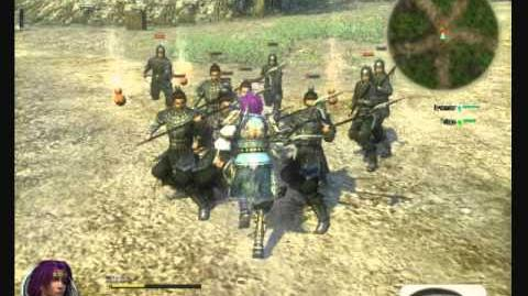 Twin Sabers -- Dynasty Warriors Online