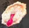 Eight-Petal Shakudo Mirror (Kessen III)