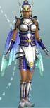 DW6E-DLC-Set02-02-Paladin Armor